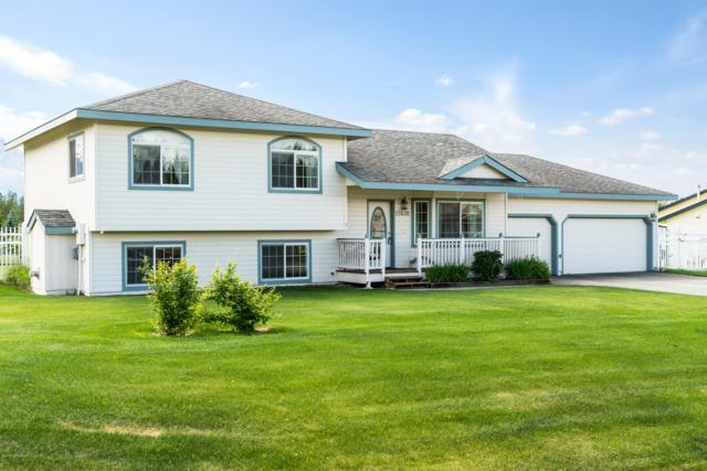 11638 E Annie Lane, Palmer, AK 99645 (MLS #19-10045) :: RMG Real Estate Network | Keller Williams Realty Alaska Group