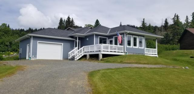856 Soundview Avenue, Homer, AK 99603 (MLS #19-10204) :: Roy Briley Real Estate Group