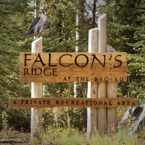 0028A S Merlin And Prairie Drive, Willow, AK 99688 (MLS #19-10247) :: RMG Real Estate Network | Keller Williams Realty Alaska Group