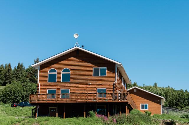 4550 Emerald Road, Homer, AK 99603 (MLS #19-10249) :: Roy Briley Real Estate Group