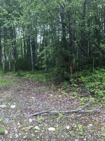 L1481 Caswell Lakes, Willow, AK 99688 (MLS #19-10269) :: RMG Real Estate Network | Keller Williams Realty Alaska Group