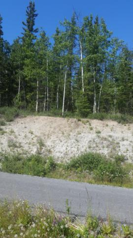 Mi 5.6 Edgerton Highway, Copper Center, AK 99573 (MLS #19-10282) :: Roy Briley Real Estate Group