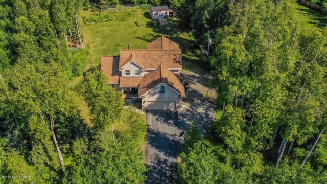 1065 W Foraker Drive, Wasilla, AK 99654 (MLS #19-10307) :: RMG Real Estate Network   Keller Williams Realty Alaska Group