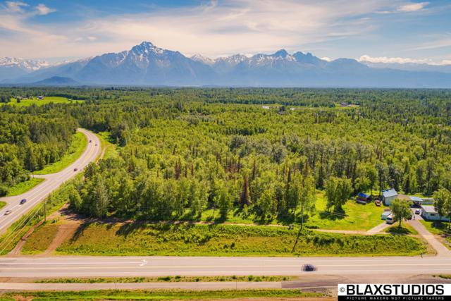 4715 N Trunk Road, Palmer, AK 99645 (MLS #19-10342) :: Roy Briley Real Estate Group
