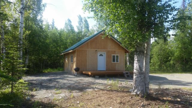 19045 Samoni, Willow, AK 99688 (MLS #19-10351) :: RMG Real Estate Network | Keller Williams Realty Alaska Group