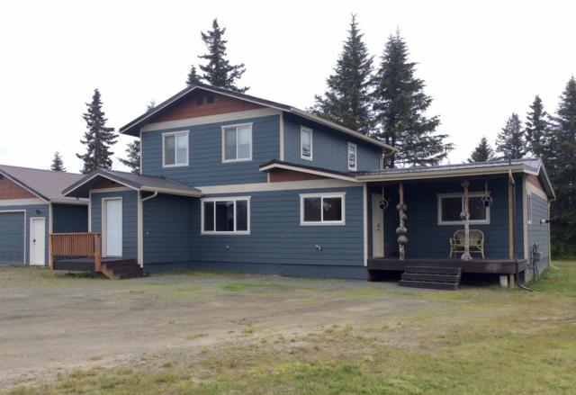 72485 Ester Avenue, Anchor Point, AK 99556 (MLS #19-10353) :: RMG Real Estate Network | Keller Williams Realty Alaska Group