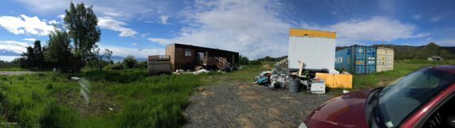 40819 Seaside Farm Drive, Homer, AK 99603 (MLS #19-10410) :: Roy Briley Real Estate Group