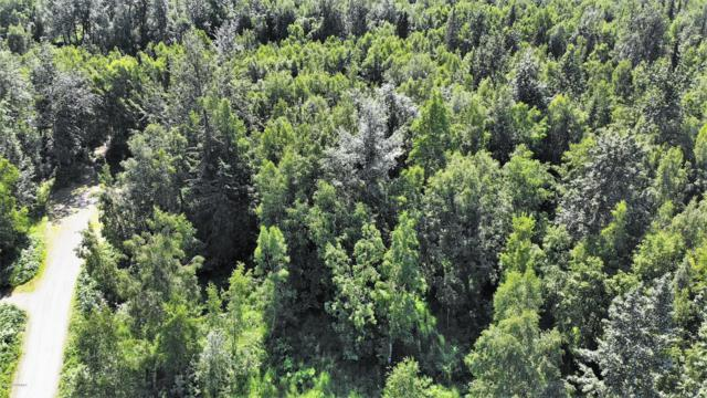 8018 S Bending Birch Circle, Palmer, AK 99645 (MLS #19-10411) :: Roy Briley Real Estate Group