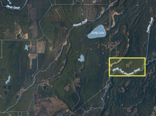 D001 No Road, Talkeetna, AK 99676 (MLS #19-10424) :: RMG Real Estate Network | Keller Williams Realty Alaska Group