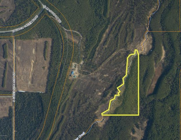 33175 S Mastodon Road, Talkeetna, AK 99676 (MLS #19-10426) :: RMG Real Estate Network   Keller Williams Realty Alaska Group