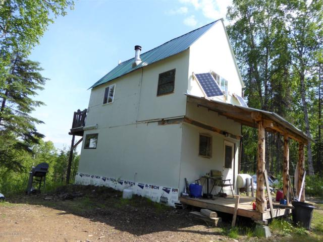 24326 S Zitziana Road, Talkeetna, AK 99676 (MLS #19-10436) :: RMG Real Estate Network   Keller Williams Realty Alaska Group