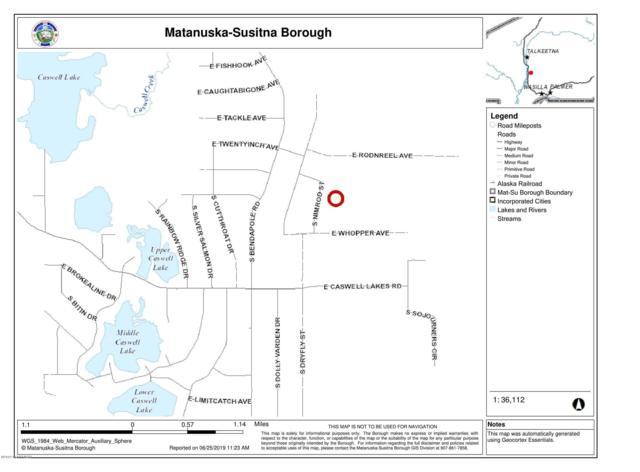 48680 S Trophy St, Willow, AK 99688 (MLS #19-10495) :: RMG Real Estate Network | Keller Williams Realty Alaska Group