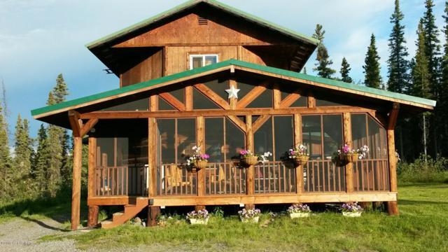 Mi 8.6 Tok Cutoff, Gakona, AK 99586 (MLS #19-10516) :: Wolf Real Estate Professionals