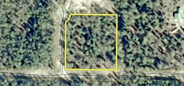 Lot 6-D Don Jack Sub Troutman Addn, Soldotna, AK 99669 (MLS #19-10543) :: RMG Real Estate Network | Keller Williams Realty Alaska Group