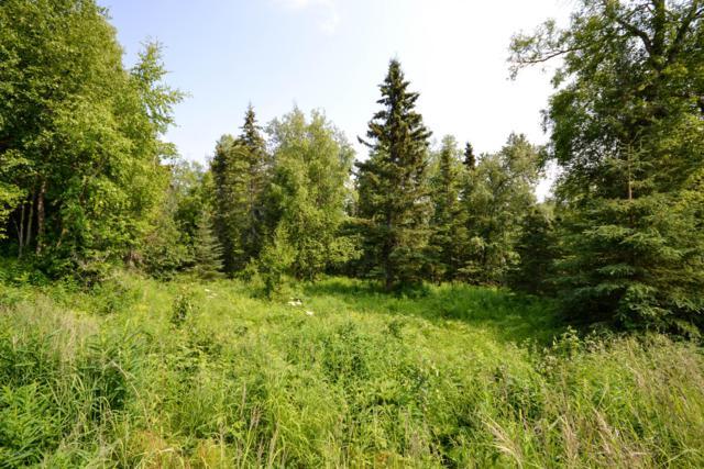 16185 E Ptarmigan Road, Palmer, AK 99645 (MLS #19-10549) :: RMG Real Estate Network | Keller Williams Realty Alaska Group