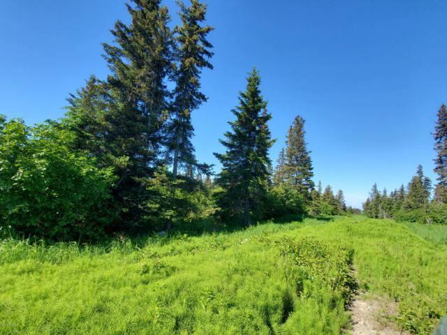 000 Barred Moore Avenue, Homer, AK 99603 (MLS #19-10584) :: RMG Real Estate Network | Keller Williams Realty Alaska Group