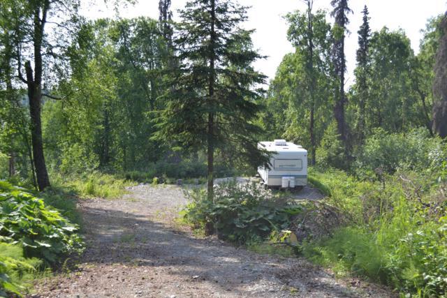 37314 S Malaspina Loop, Talkeetna, AK 99676 (MLS #19-10627) :: RMG Real Estate Network   Keller Williams Realty Alaska Group