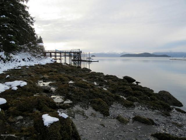 11385 Glacier Highway, Auke Bay, AK 99821 (MLS #19-10644) :: Roy Briley Real Estate Group