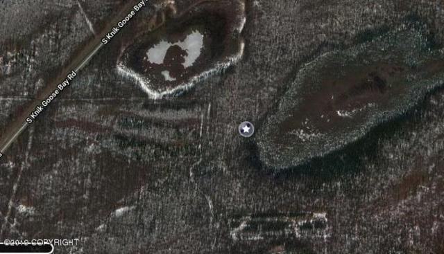 C006 Knik Goose Bay Road, Wasilla, AK 99654 (MLS #19-10675) :: RMG Real Estate Network   Keller Williams Realty Alaska Group