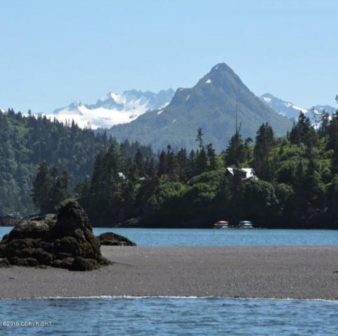 Lot 10 Peterson Bay, Homer, AK 99603 (MLS #19-10956) :: Core Real Estate Group