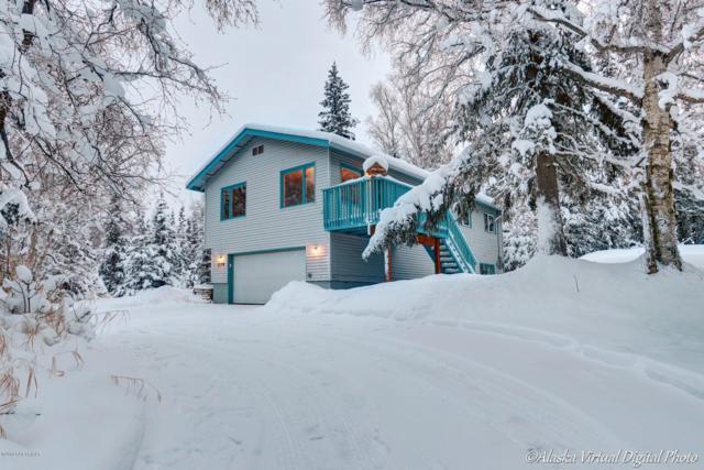 11701 Wranglers Way, Anchorage, AK 99516 (MLS #19-11) :: Alaska Realty Experts