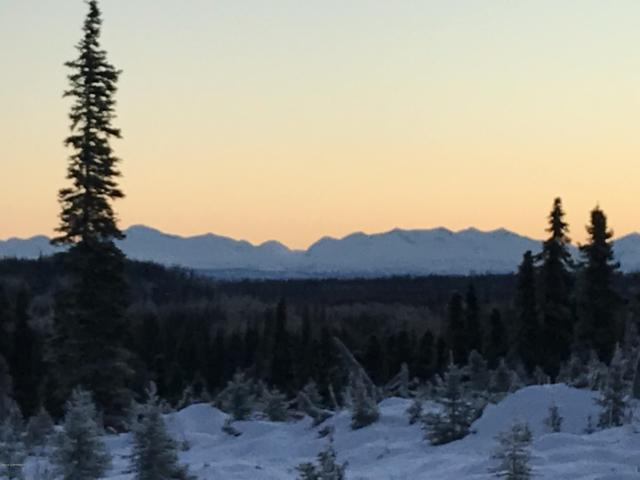 80 Acre Seward Meridian Kn S1/2 Sw 1/4, Clam Gulch, AK 99568 (MLS #19-1101) :: Core Real Estate Group