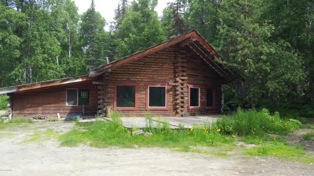 1905 S Clara Circle, Talkeetna, AK 99676 (MLS #19-11049) :: RMG Real Estate Network   Keller Williams Realty Alaska Group