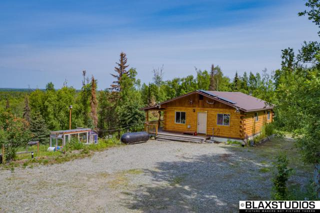 17513 W Lesser Canada Drive, Wasilla, AK 99654 (MLS #19-11050) :: RMG Real Estate Network | Keller Williams Realty Alaska Group