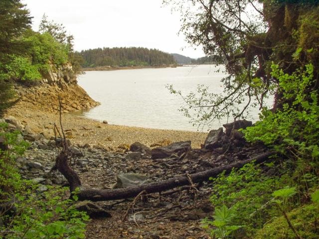 000 Little Tutka Bay, Seldovia, AK 99603 (MLS #19-11068) :: Wolf Real Estate Professionals