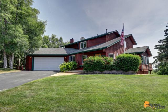 4510 Montrose Circle, Anchorage, AK 99515 (MLS #19-11076) :: RMG Real Estate Network | Keller Williams Realty Alaska Group