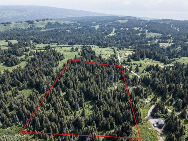 Tr 1 Rea Drive, Homer, AK 99603 (MLS #19-11139) :: RMG Real Estate Network | Keller Williams Realty Alaska Group