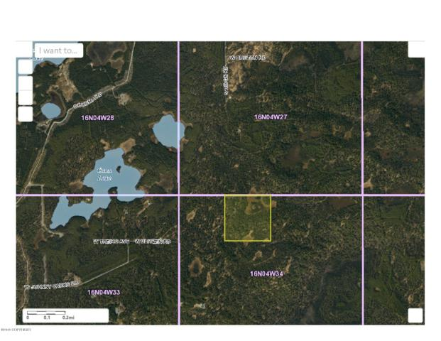 B002 No Road, Wasilla, AK 99654 (MLS #19-11280) :: RMG Real Estate Network | Keller Williams Realty Alaska Group
