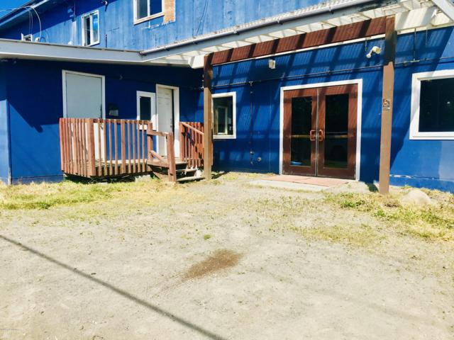 397 E Pioneer Avenue, Homer, AK 99603 (MLS #19-11362) :: Team Dimmick