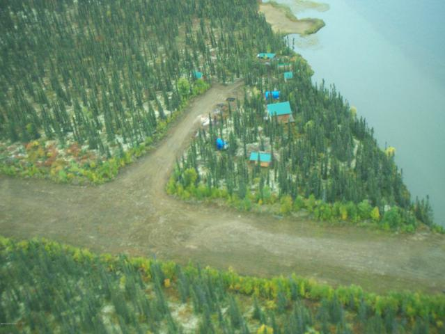 000 Remote Lake Front, Sleetmute, AK 99668 (MLS #19-11525) :: Wolf Real Estate Professionals