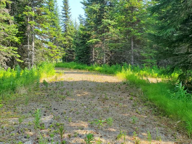 35161 Old Sterling Highway, Anchor Point, AK 99556 (MLS #19-11540) :: Team Dimmick