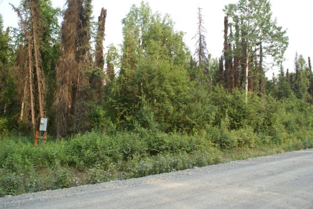 36663 S Long Branch Street, Talkeetna, AK 99676 (MLS #19-11544) :: RMG Real Estate Network   Keller Williams Realty Alaska Group