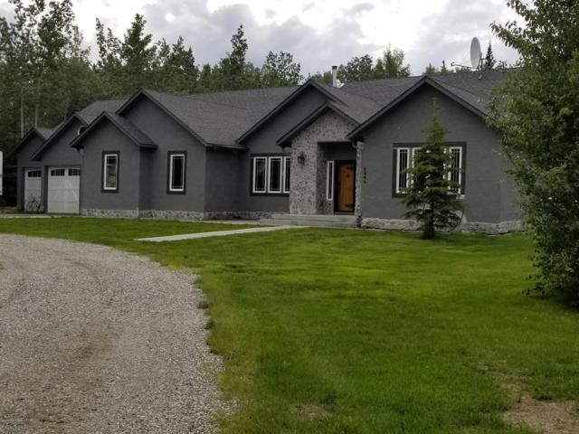 4345 Olmstead Road, Delta Junction, AK 99737 (MLS #19-11596) :: RMG Real Estate Network | Keller Williams Realty Alaska Group