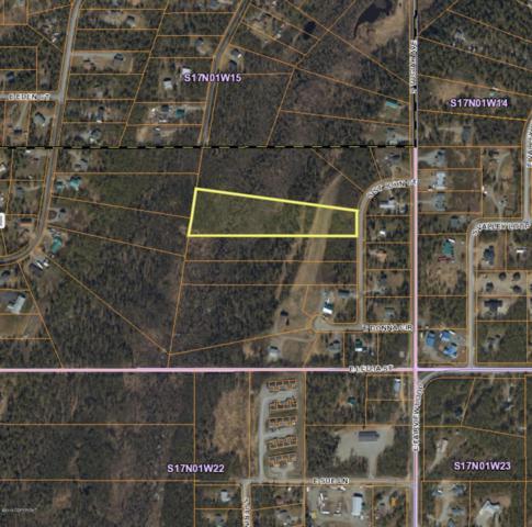 2200 S St John Court, Wasilla, AK 99654 (MLS #19-11728) :: Core Real Estate Group