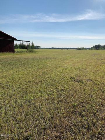LD9 Keaster Rd Road, Delta Junction, AK 99737 (MLS #19-11754) :: RMG Real Estate Network | Keller Williams Realty Alaska Group