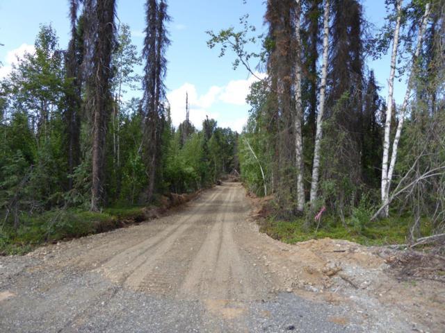 43474 S Parks Highway, Talkeetna, AK 99676 (MLS #19-11769) :: RMG Real Estate Network   Keller Williams Realty Alaska Group