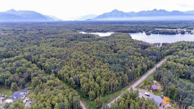 5849& 5901 N Steen Road, Wasilla, AK 99654 (MLS #19-11819) :: Team Dimmick
