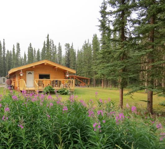 000 E D Street, Tok, AK 99780 (MLS #19-11840) :: RMG Real Estate Network | Keller Williams Realty Alaska Group