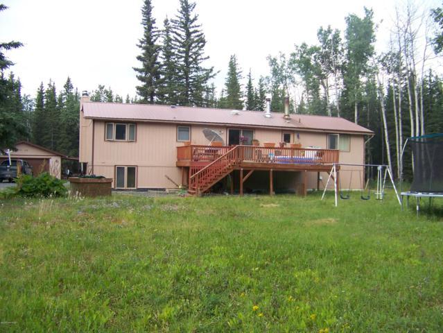 NHN Larkspur Loop, Copper Center, AK 99573 (MLS #19-11859) :: RMG Real Estate Network | Keller Williams Realty Alaska Group