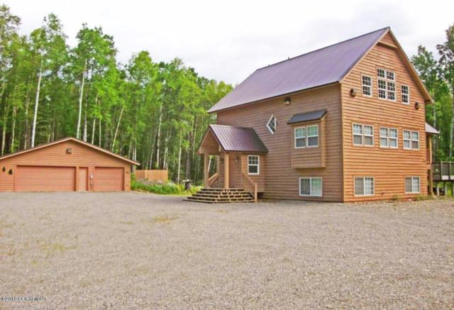 34657 S St John Drive, Talkeetna, AK 99676 (MLS #19-11935) :: RMG Real Estate Network   Keller Williams Realty Alaska Group