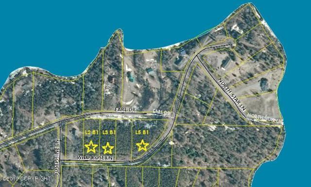L2 B1 Wild Rose Lane, Nikiski/North Kenai, AK 99635 (MLS #19-11936) :: RMG Real Estate Network | Keller Williams Realty Alaska Group