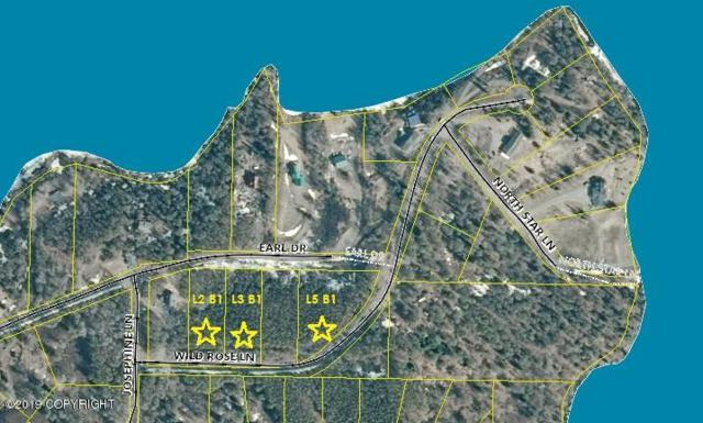 L3 B1 Wild Rose Lane, Nikiski/North Kenai, AK 99635 (MLS #19-11937) :: RMG Real Estate Network | Keller Williams Realty Alaska Group