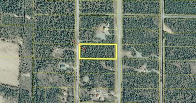 L5 B2 Chinook Street, Soldotna, AK 99669 (MLS #19-11987) :: Roy Briley Real Estate Group
