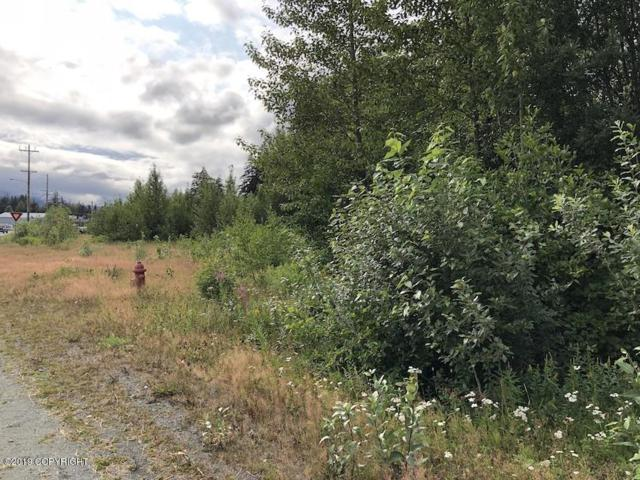 NHN Lot 10 Hertz Subdivision, Haines, AK 99827 (MLS #19-11992) :: RMG Real Estate Network | Keller Williams Realty Alaska Group