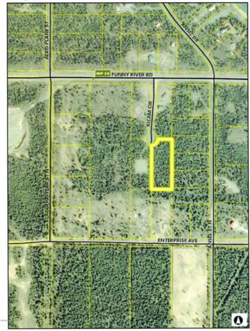 L3D B1 Kicam Circle, Soldotna, AK 99669 (MLS #19-12035) :: Roy Briley Real Estate Group