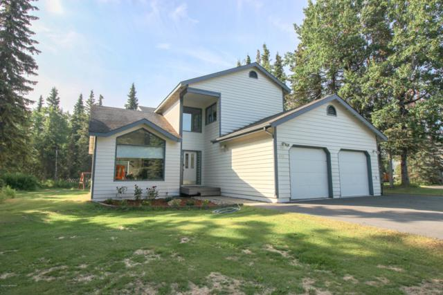395 Dolchok Lane, Kenai, AK 99611 (MLS #19-12067) :: Roy Briley Real Estate Group